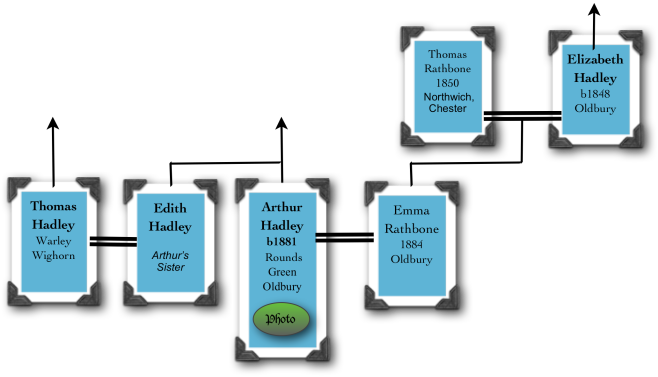 title tree